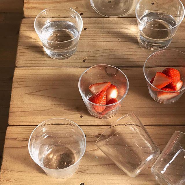 昨年の個展でもご好評いただいた keinoさんのこちらのカップ。夏には蕎麦猪口のような使い方をおすすめいたしましたが、他にもグラスとして、また小鉢風にお料理やデザートを盛り付けてと、揃えておくとなにかと重宝しそうな器です。ひとつひとつ微妙に形や気泡の出方が異なるのも吹きガラスならではの魅力。数もありますのでどうぞごゆっくりお好きなものをお選びくださいね。.keino glass・カップ ¥2000現在カラーはクリアのみとなっております。