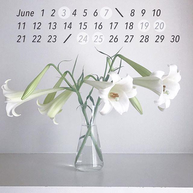 ..6月営業のご案内.本日は布花教室開催のため休業いたします。ご参加の方以外はご入店いただけませんのでご注意くださいませ。.今月はお休みの日がイレギュラーになっております。ご来店の際はこちらのカレンダーをぜひチェックなさってくださいね。どうぞよろしくお願いいたします。.6月8日(金)-23日(土)色をテーマにしたクラフト展「Green  Green」.イベント出店20日(水)-25日(月)鎌倉・湘南スローライフ阪急梅田本店・9階祝祭広場..みんなのテーブル○6月6日(水)シュゲラーカフェ @shugeler_cafe○11日(月) 22日(金)ワークショップ(満席)季節の草花アレンジ @ombrage__○18日(月) ワークショップ(残席3)季節の香りあそび @itononiwa○28日(木) 29日(金)30(土)ナンタケットバスケット用パーツ&ジュエリー販売会 Tiara U @paraiba55..#鎌倉 #雑貨 #器 #カフェ #インテリア #ギャラリー #ワークショップ